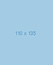 110px135(blue).png